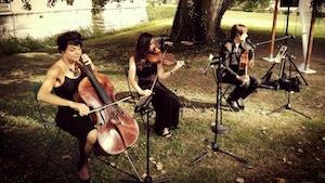 L'Orchestre de variété internationale Smart Music lors d'un mariage.